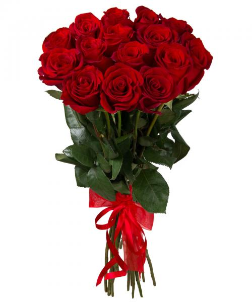 17 Roses rouges. 17_Red_Roses-SN7.jpg